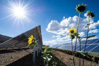 Ba lời khuyên khi mua sắm vật tư và lựa chọn nhà thầu lắp điện mặt trời