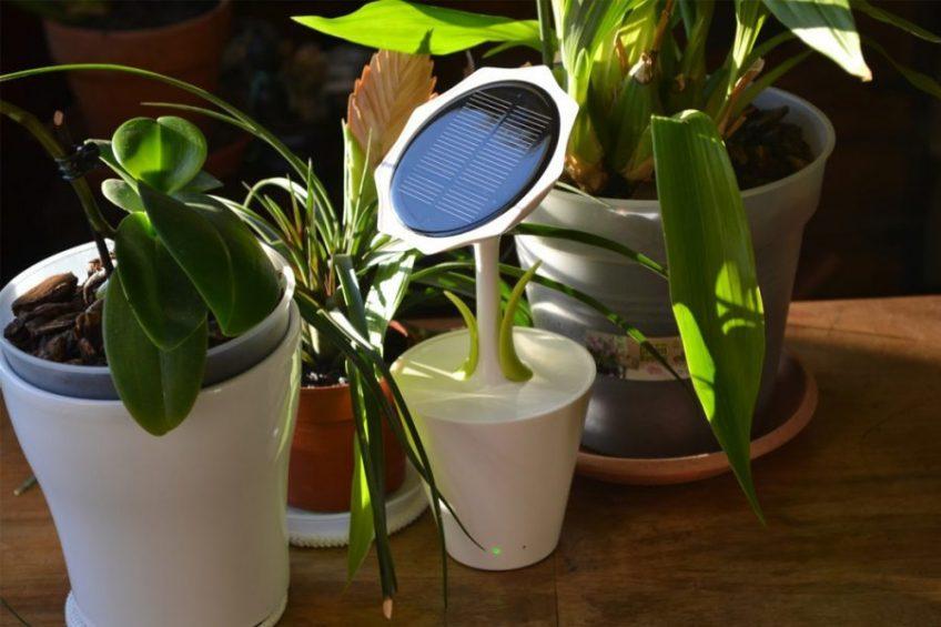 Bộ sạc điện thoại bằng NLMT hình hoa hướng dương