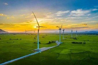 Giảm giá FIT sẽ gây tổn hại đến ngành điện gió Việt Nam
