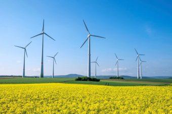 Năng lượng tái tạo không lấy mất việc làm của năng lượng truyền thống